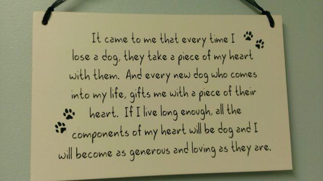 dogs heart
